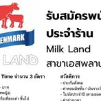 พนักงานชงกาแฟ ร้าน Milk Land